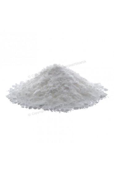 Surfactante sólido SCI